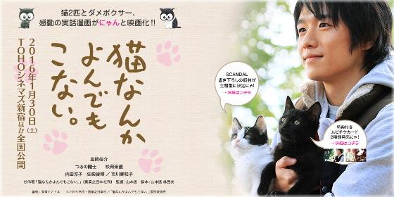 Nouvelle chanson「Morning sun」pour le film「Neko Nanka Yondemo Konai」