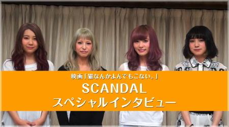Interview sur 「Morning sun」 et『Neko Nanka Yondemo Konai.』