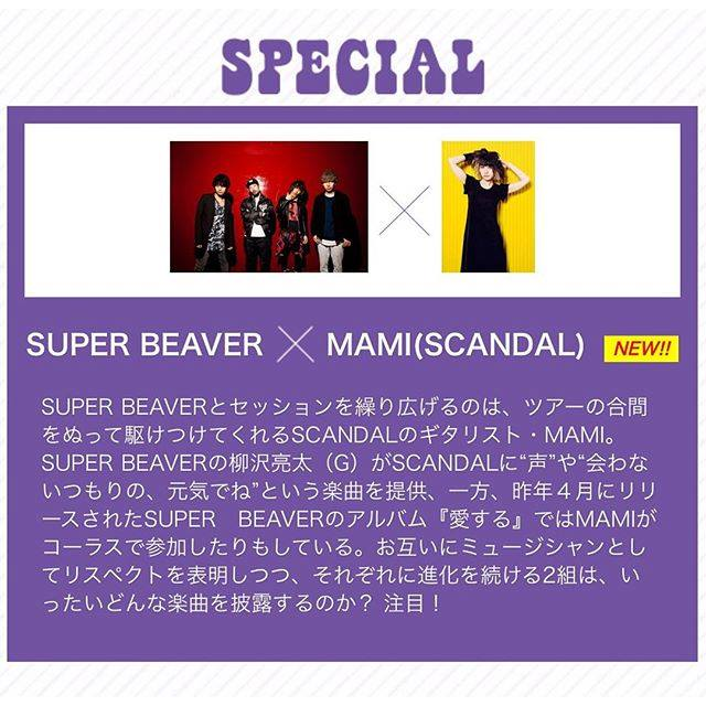 MAMI au「JAPAN JAM BEACH 2016」avec SUPER BEAVER